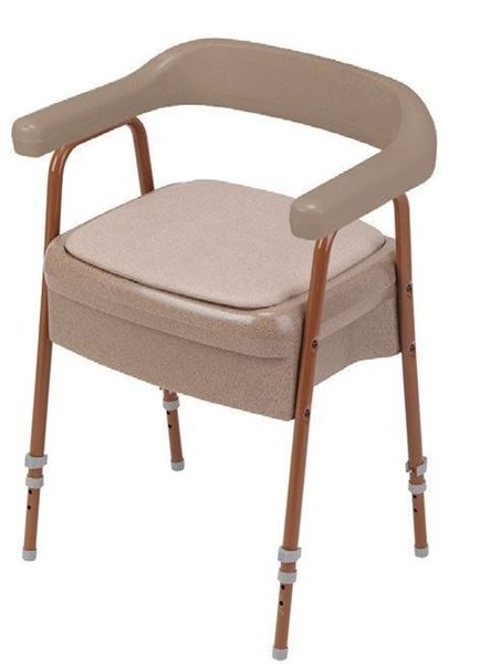 Ashby Commode Chair